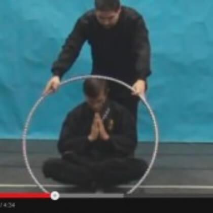 Ninja-Leviation